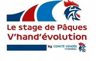 Stage handball de paques comité de vendée de handball