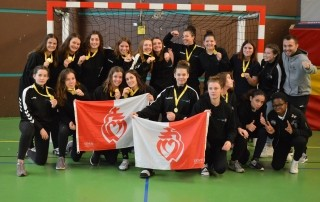 section handball vendée