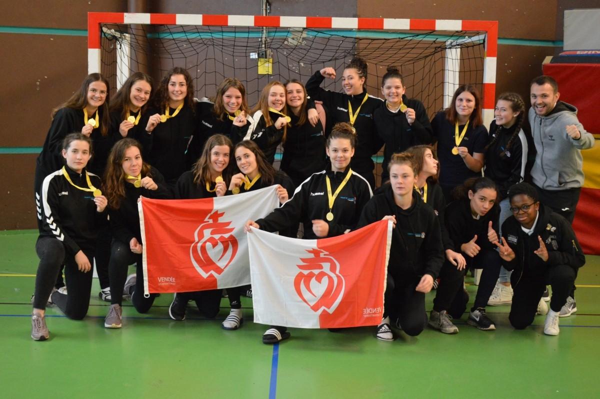 section handball vendée